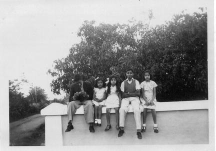 Five children sitting on a wall