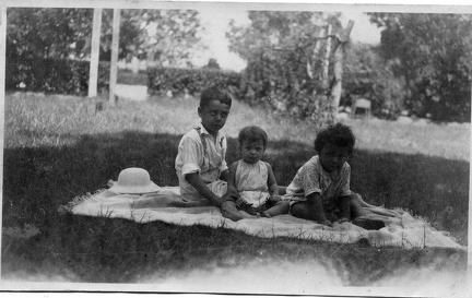 Three children having a picnic