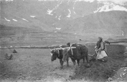 Trip to Baltistan May-June 1924