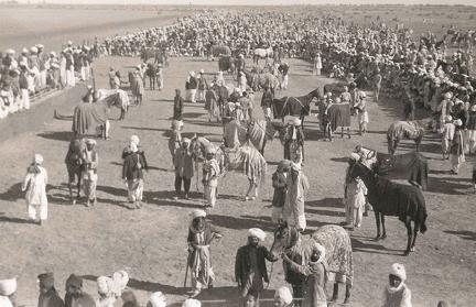 The Paddock Biloch Races, Jacobabad, Sind