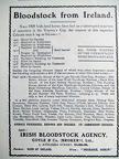 Irish Bloodstock Agency Advertisement 1918