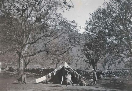 Camp Sind Valley, Kashmir May to June 1920