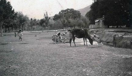 Woman Spinning in Sind Valley, Kashmir. May to June 1920