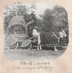 Ladies bullock carriage