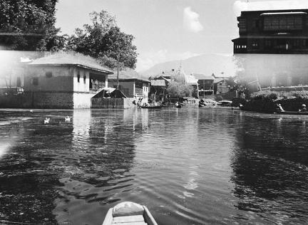 Views on Water, Srinagar